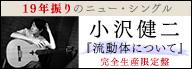 小沢健二『流動体について』