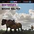 """ワルター&コロムビアの最高傑作ベートーヴェン""""田園""""が45回転2枚組レコードで復活!"""