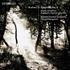 """ダウスゴー&スウェーデン室内管によるブラームス第2弾は""""交響曲第2番""""!(SACDハイブリッド)"""