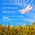 大江戸シンフォニックウィンドオーケストラによる『吹奏楽コンクール自由曲レパートリー集 Vol.3「落夏流穂」』