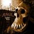 予約ポイント10倍!ドイツの重鎮パワー・メタル・トリオ=レイジ(Rage)通算23枚目となるニュー・アルバム