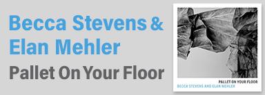 Becca Stevens & Elan Mehler『Pallet On Your Floor』