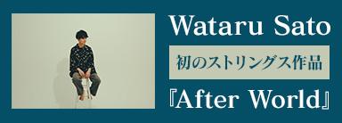 Wataru Sato『After World』