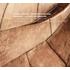 """エルヴェ・ニケ&フランダース放送合唱団によるレクイエム・シリーズ最終巻はプーランクの""""スターバト・マーテル""""&デザンクロの""""レクイエム"""""""