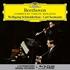 シュナイダーハン&ゼーマン~ベートーヴェン:ヴァイオリン・ソナタ全集(3CD+1BDオーディオ)