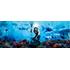 全世界興行収入、DC映画歴代No.1!未体験、予測不能の海中バトル・エンタ-テイメント『アクアマン』Blu-ray&DVD、7月3日発売