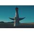 """2025年大阪・関西万博開催決定で再び注目を集める""""太陽の塔""""の魅力と謎に迫る『太陽の塔』Blu-ray&DVD、6月28日発売"""