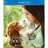 犬と人間の感動の転生ストーリー第2弾!映画『僕のワンダフル・ジャーニー』Blu-ray&DVDが3月4日発売!オンライン期間限定15%オフ!