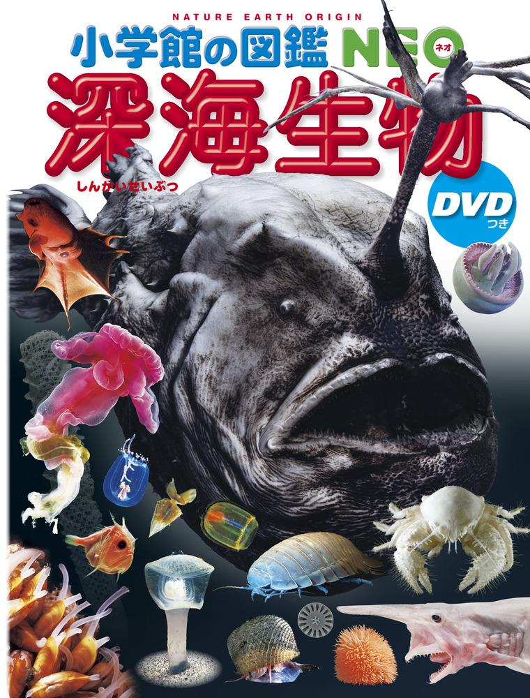 小学館の図鑑NEO 深海生物 DVDつき [BOOK+DVD]_2