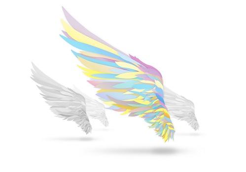 翼を持つ者