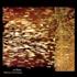 Mono Fontana(モノ・フォンタナ)|「アルゼンチン音響派」シーンの中心人物が残した伝説的なアルバム『クリバス』がCD/LPで復刻