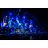 Def Leppard(デフ・レパード)、2018年12月にロンドンのO2アリーナで行った『ヒステリア』完全再演公演が登場《国内盤オンライン限定10%オフ!》