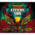 Citrus Sun(シトラス・サン)|インコグニート別動隊による2年ぶり新作『Expansions & Visions』