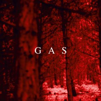 Gas(ガス)aka Wolfgang Voigt(ウルフギャング・フォイト)
