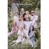 TWICE|韓国9枚目のミニアルバム『MORE & MORE』|今なら先着で選べる3仕様