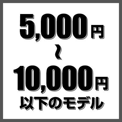 5000円以上1万円以下