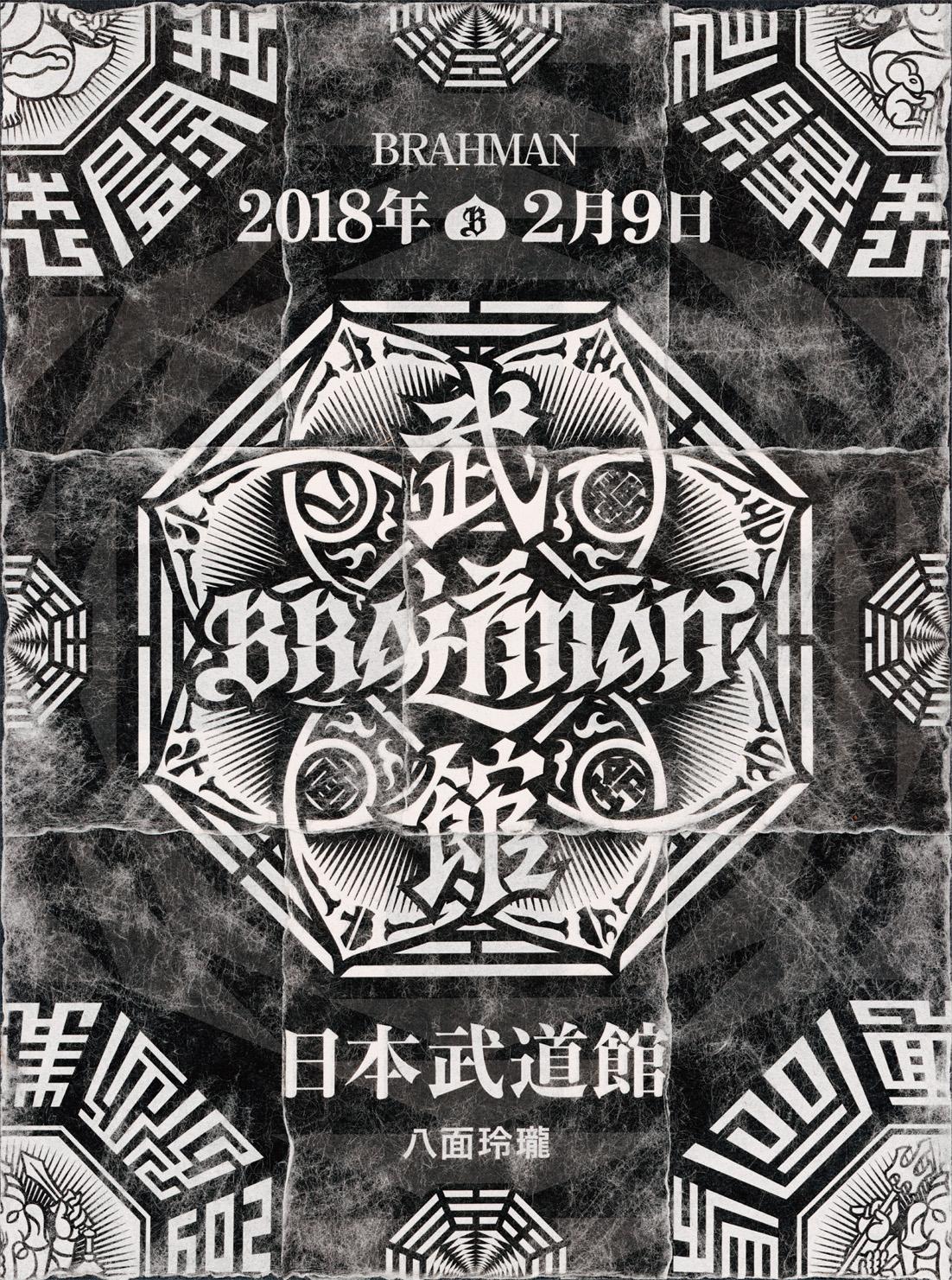 「八面玲瓏」日本武道館 DVDジャケット