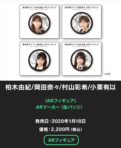 新体感ライブ AKB48 AR