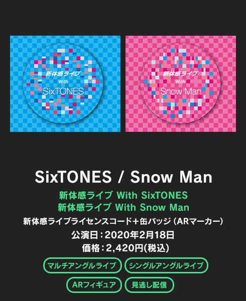 新体感ライブ SixTONES / Snow Man